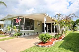 Residential Property for sale in 193 TIMBER RUN DRIVE, Palm Harbor, FL, 34684