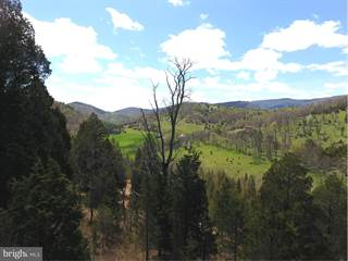 Land for sale in 240.05 acs MAUZY GAP, Franklin, WV, 26807