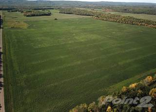 Farm And Agriculture for sale in Quarter Section SE 20-18-15w in the RM of Rosedale, Rosedale, Manitoba