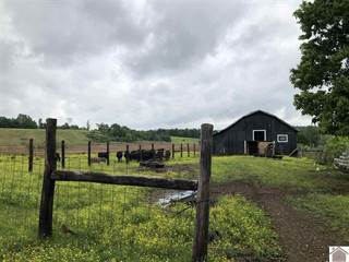 Farm And Agriculture for sale in White School Rd. 181 Evans Mill Rd., Dawson Springs, KY, 42408