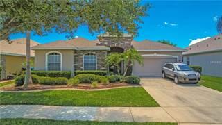 Single Family for sale in 8424 DOVER VIEW LANE, Orlando, FL, 32829
