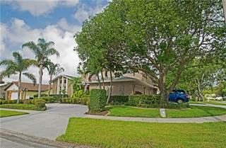 Single Family for sale in 2360 HIDDEN LAKE DRIVE, Palm Harbor, FL, 34683