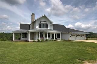 Single Family for sale in 10884 South Street, Crockery, MI, 49448