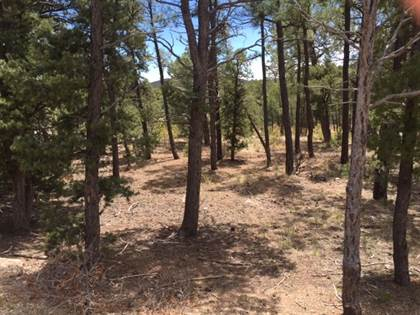 Lots And Land for sale in 6 Red Tail Ridge, Pecos, NM, 87552