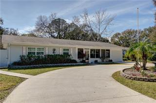 Single Family for sale in 4704 W BALLAST POINT BOULEVARD, Tampa, FL, 33611