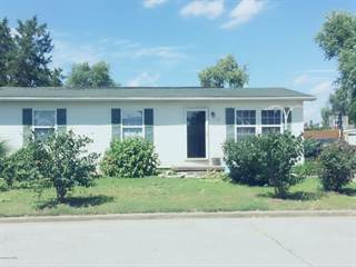 Single Family for sale in 16 Seminole, McClure, IL, 62957