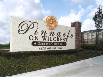 Apartment for rent in 9520 Wilcrest Drive, Houston, TX, 77099