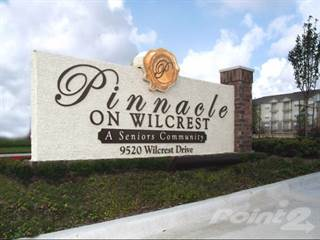 Apartment for rent in Pinnacle on Wilcrest, Houston, TX, 77099