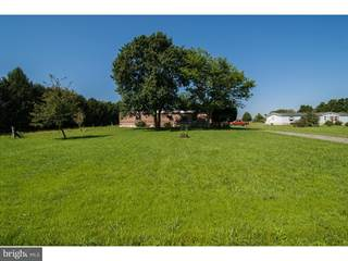 Farm And Agriculture for sale in 1047 BLACK SWAMP ROAD, Felton, DE, 19943