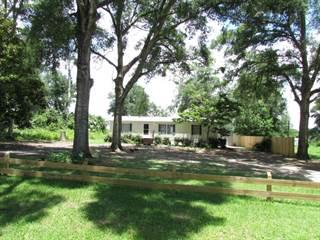 Residential Property for sale in 2249 E Goldpearl Lane, Hernando, FL, 34442