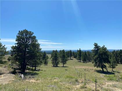 Lots And Land for sale in Lot 60 N Delphia ROAD, Roundup, MT, 59072