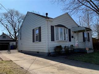 Single Family for sale in 13603 Kirton Ave, Cleveland, OH, 44135