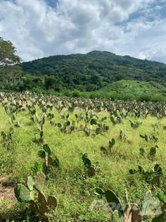 Guadalajara Farms For Sale Ranches Acreages For Sale In Guadalajara Point2