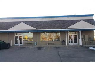 Comm/Ind for sale in 26978 PLYMOUTH Road, Redford, MI, 48239