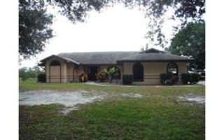 Single Family for sale in 3050 E St Rd 64 E, Zolfo Springs, FL, 33890