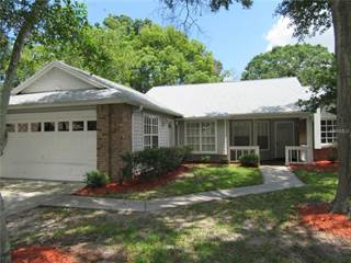 Single Family for sale in 2051 BONNIE AVENUE, Palm Harbor, FL, 34683
