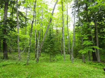 Lots And Land for sale in 80 Acres Dog Patch, L'Anse, MI, 49946