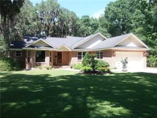 Single Family for sale in 1131 Julienton Drive NE, Townsend, GA, 31331