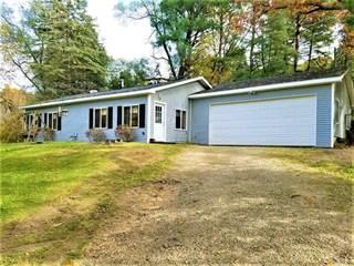 Single Family for sale in 3475 INDIAN LAKE Drive, Deerfield, MI, 48855
