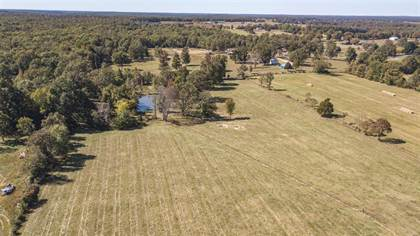 Farm And Agriculture for sale in 1 CR 459, Poplar Bluff, MO, 63901