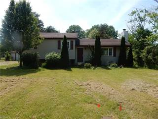 Single Family for sale in 6620 Vrooman Rd, Leroy, OH, 44077