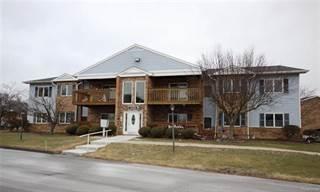 Condo for sale in 1305 HARBOUR Drive 16, Trenton, MI, 48183