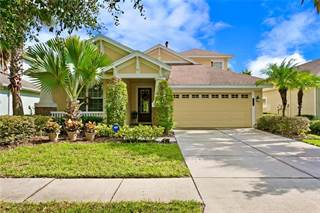 Single Family for sale in 8125 HAMPTON LAKE DRIVE, Tampa, FL, 33647