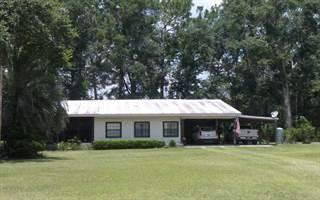 Single Family for sale in 19783 LANCASTER ROAD, Live Oak, FL, 32060