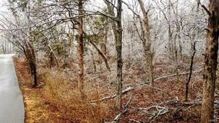 Land for sale in 44 South Lakeshore &45 Lots, Byrnes Mill, MO, 63051