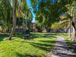Apartment For Rent In Carib Villas Apartments   1 Bedroom / 2 Bath, South  Miami