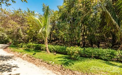 Lots And Land for sale in Nosara L Section Development Property, Nosara, Guanacaste