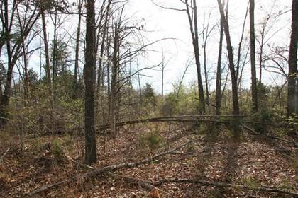 Lots And Land for sale in Lot 10 E Persimmon Point Road, Greater Diamond City, AR, 72644