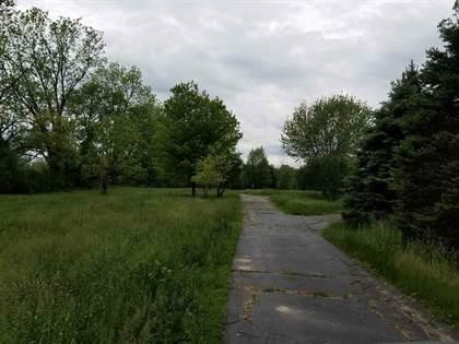 Lots And Land for sale in 4676 WILLIAMSTON RD, Stockbridge, MI, 49285