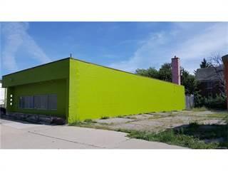 Comm/Ind for sale in 12720 E WARREN Avenue, Detroit, MI, 48215