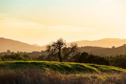 Lots And Land for sale in 2905 Bramadero Rd, Los Olivos, CA, 93441