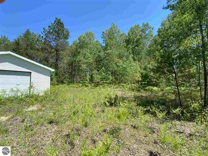 Lots And Land for sale in 000 Menzies Road, Lake City, MI, 49651