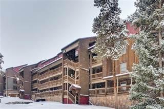 Condo for sale in 800 FOUR OCLOCK ROAD 3C, Breckenridge, CO, 80424