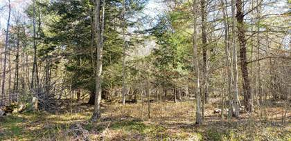 Lots And Land for sale in 4454 N Amber Road Parcel A, Scottville, MI, 49454