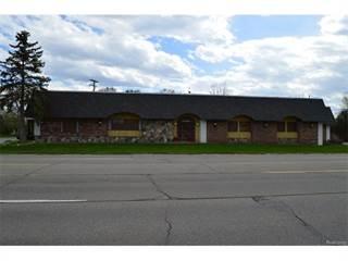 Comm/Ind for sale in 30325 6 MILE, Livonia, MI, 48154