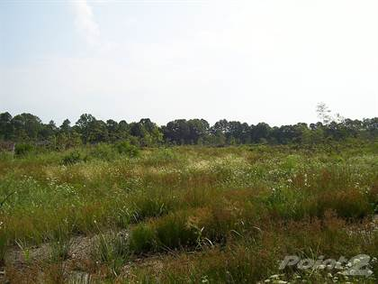 Lots And Land for sale in 113 LR 303, Ashdown, AR, 71822