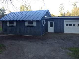 Single Family for sale in 319 HERRICKS COVE Road, Woodbury, VT, 05681