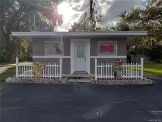 Residential Property for rent in 2244 N Florida Avenue, Hernando, FL, 34442