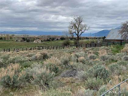 Lots And Land for sale in 2585 Jacks Valley Road, Minden, NV, 89411