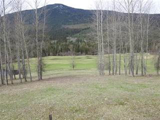 Land for sale in 2406 Trinity Valley Road,, Lumby, British Columbia
