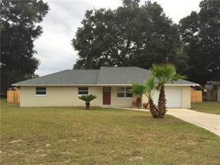 Single Family for sale in 2426 NORTH AVENUE, Leesburg, FL, 34748