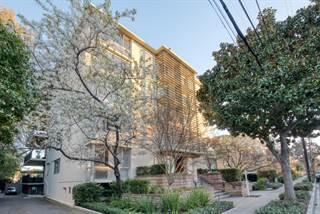 Condo for sale in 360 Everett AVE 5B, Palo Alto, CA, 94301