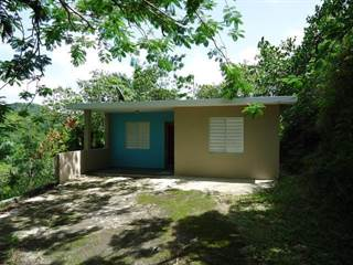 Single Family for sale in Lot 1 CARR. 626, Arecibo Municipality, PR, 00612
