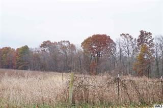 Land for sale in Parcel #1 GRAND RIVER RD, Rives Junction, MI, 49277