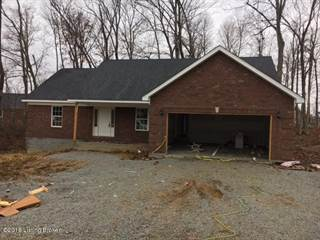 Single Family for sale in 123 Peabody Loop, Deatsville, KY, 40013