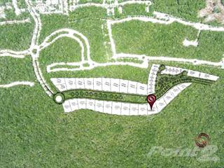 Farm And Agriculture for sale in High density residential tourist lot in Aldea Zama, Tulum M-18, Tulum, Quintana Roo